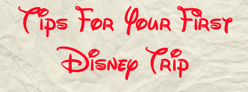 walt disney world, disney vacation, disney vacation tips, disney vacation advice, adult disney vacations