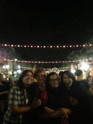 disney side, disney cast member, disney college program, celebration florida, florida snow