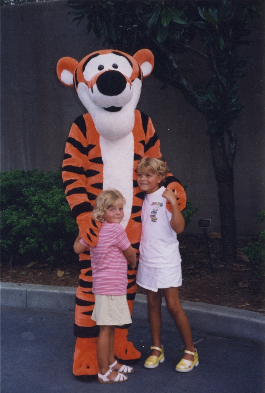 walt disney world, character meet and great, tigger